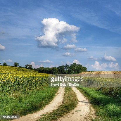 Dirt Road On Grassy Field Against Blue Sky