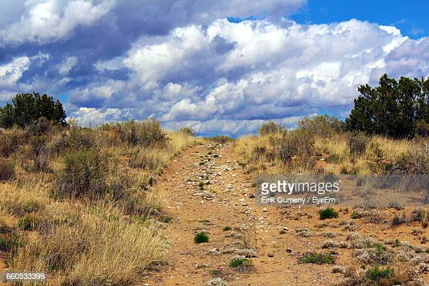 Dirt Road Passing Through Field Against Cloudy Sky