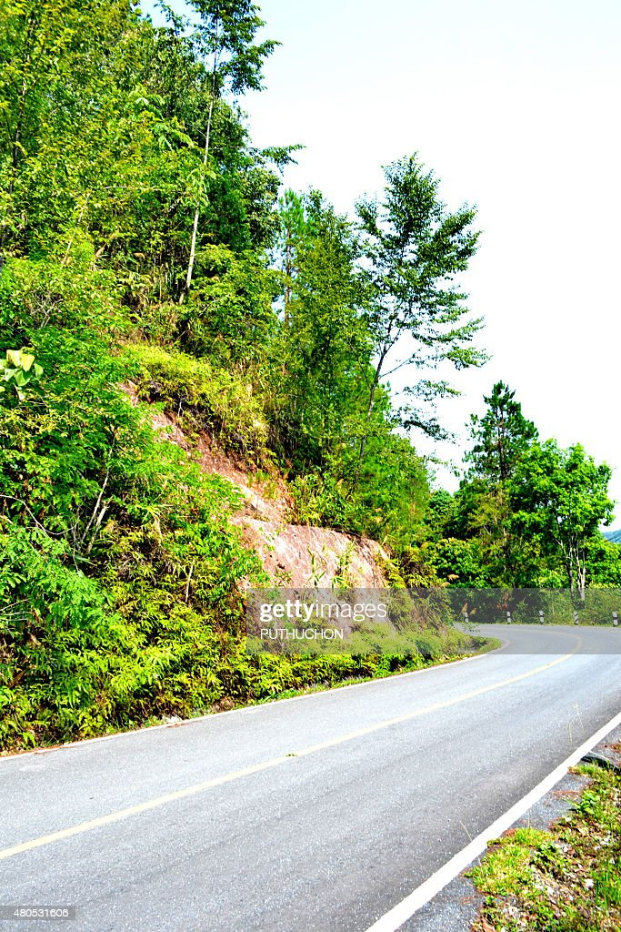 Dirt Road : Stock Photo
