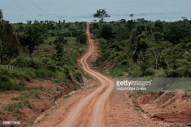 A dirt road runs through the forest in Xapuri Acre State in northwestern Brazil on October 8 2014 Xapuri has the world's only producer of...