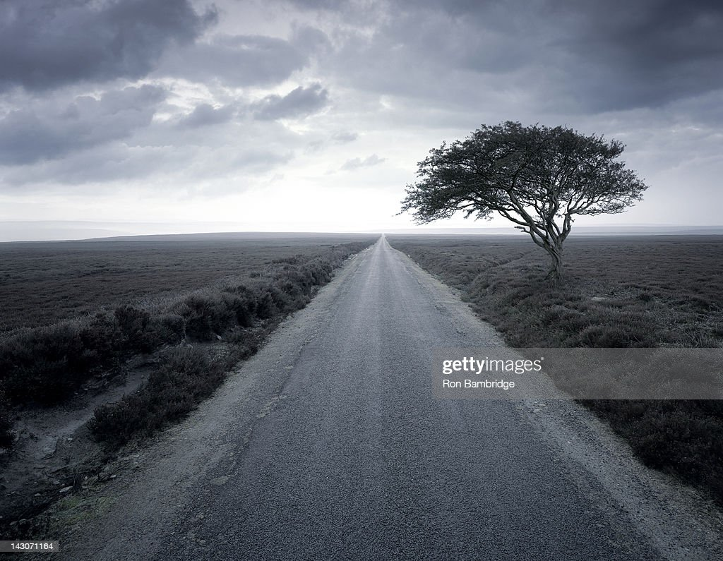Dirt road stretching through rural landscape