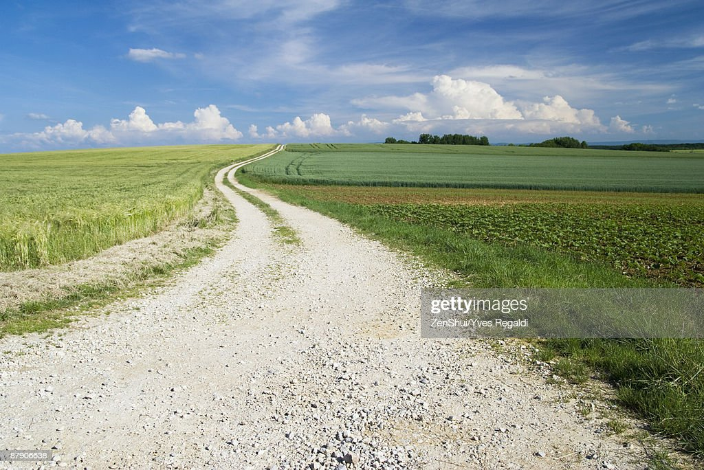 Dirt road through beautiful countryside