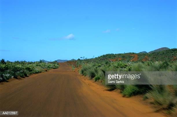 Dirt Road Through Grande Terre Island