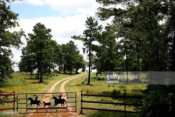 Schotterstrecke ranch in der Nähe von Austin, Texas. Zaun, gate.