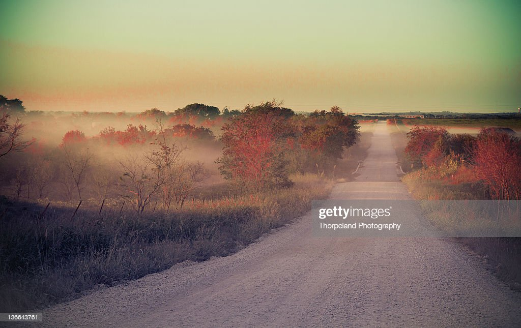 Dirt road with autumn trees : Stock Photo