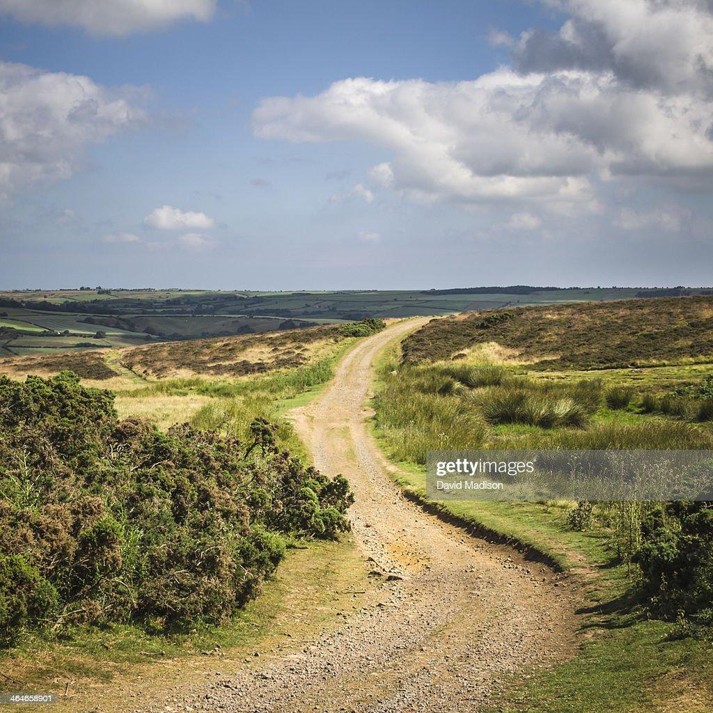 Dirt trail through North York Moors National Park.