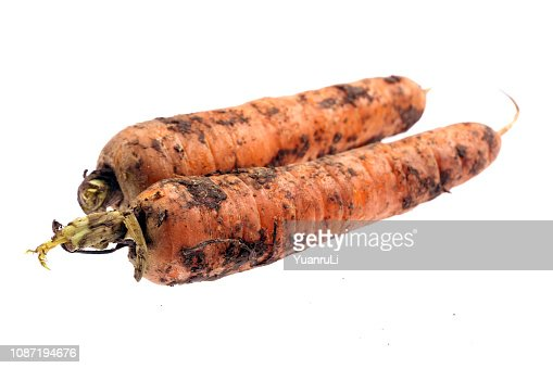 dirty Carrots isolated on white background : Stock Photo
