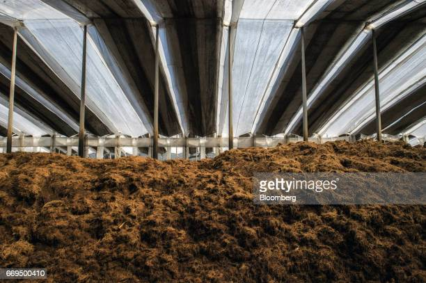 Discarded agave fibers sit at a compost site at the Patron Spirits Co distillery in Atotonilco El Alto Jalisco Mexico on Tuesday April 4 2017 The...