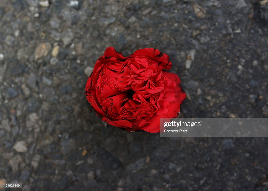 A discarded rose bud is viewed in the street in the floral district on February 13, 2013 in New York City. With Valentines Day tomorrow, the district is experiencing a rush of floral buyers and sellers to service customers on the national day of romance. Along with Mother's Day, Valentine's Day is one of the busiest days of the year for florists and flower growers.