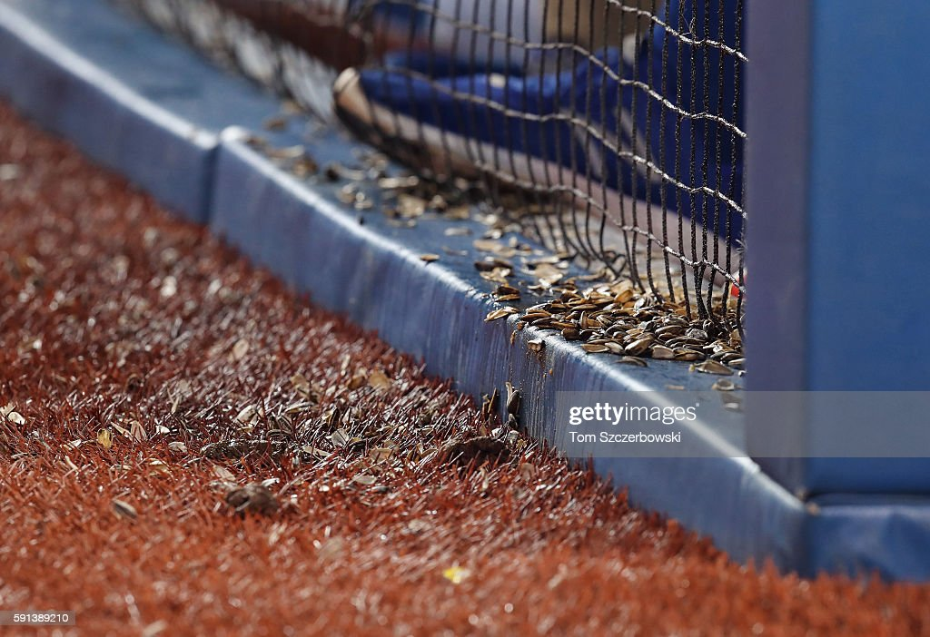 Discarded sunflower seeds strewn about the turf field outside the Toronto Blue Jays dugout during MLB game action against the Tampa Bay Rays on...