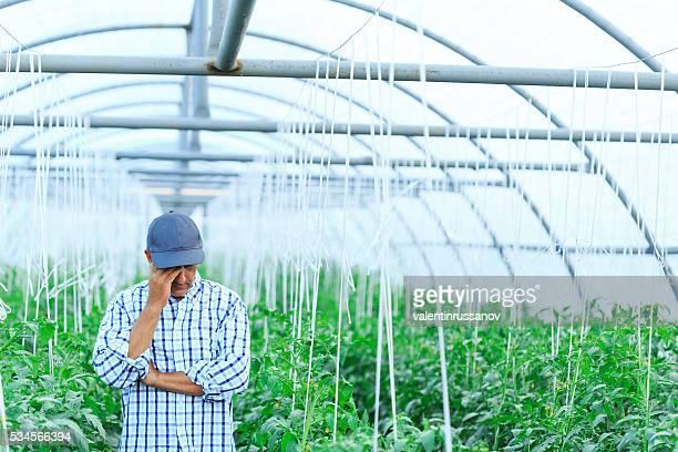 Discouraged Farmer