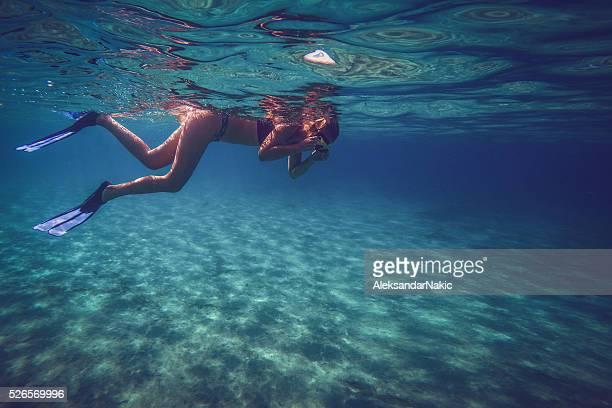 Découvrir le monde sous la mer