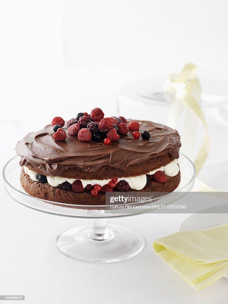 Dish of chocolate cake : Stock Photo