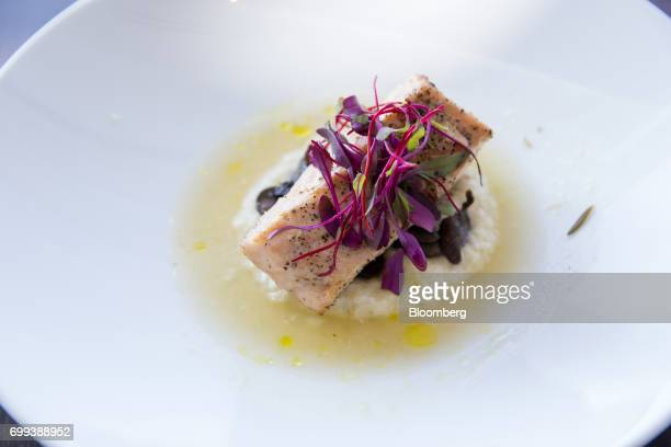 A dish of olive oil poached loch dart salmon with cauliflower risotto and wild mushroom is arranged for a photograph inside the American Airlines...