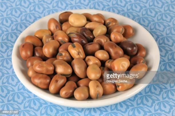 Dish of raw Fava Beans (Vicia faba)