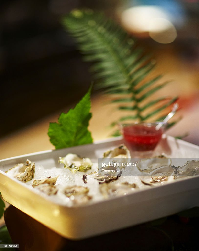 Dish of raw oysters on ice : Stock Photo