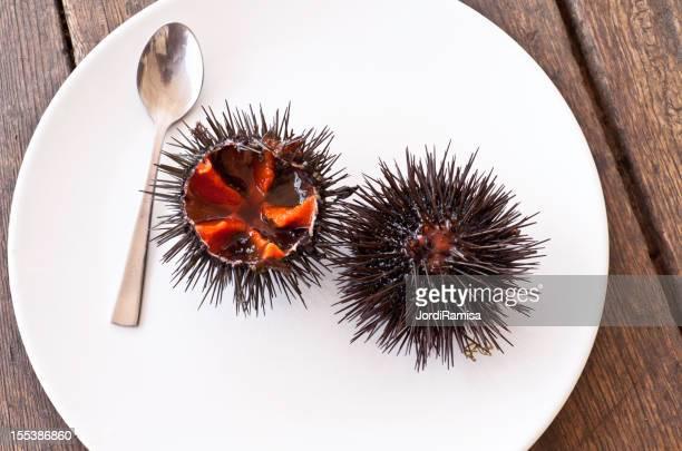 dish of sea urchins