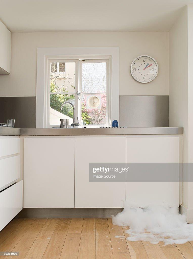 A dishwasher leaking