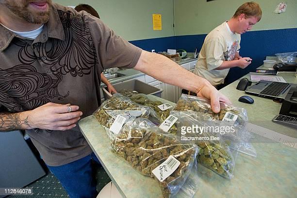 Dispensery owner Stephen Gasparas left sorts bags of marijuana at his establishment in Redding California Tuesday December 1 2009