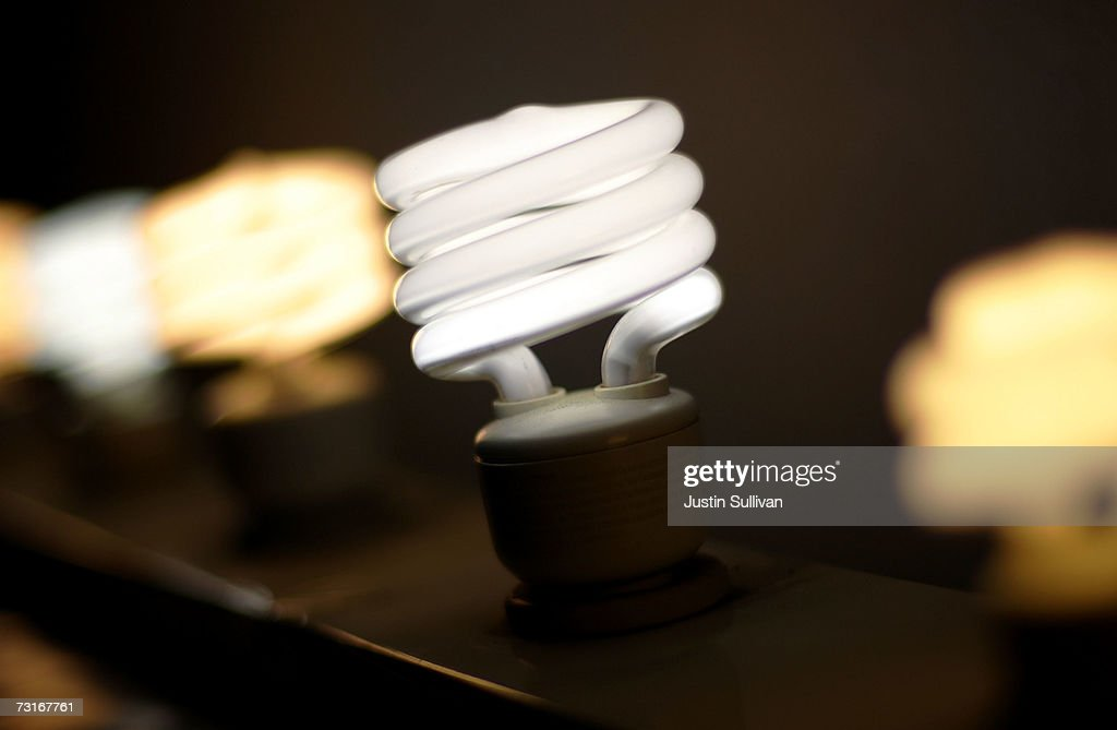 A display of compact flourescent light bulbs is seen at the City Lights Light Bulb Store January 31 2007 in San Francisco California California State...