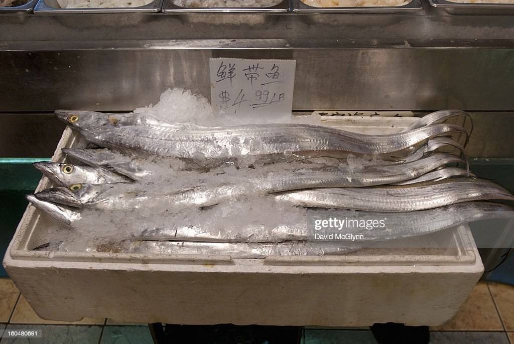 Display of fresh fish on ice : Stock Photo
