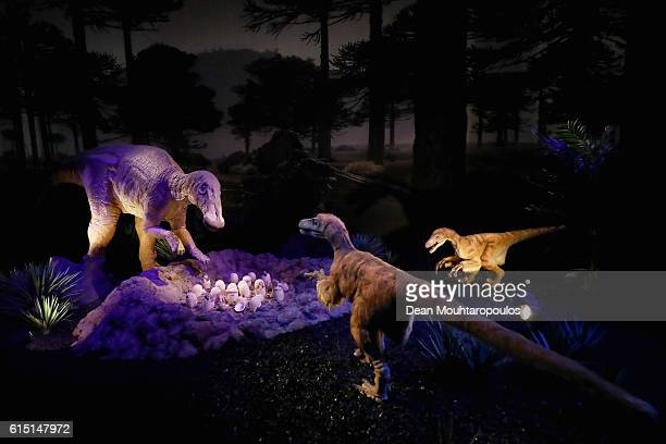 A display of the Deinonychus antirrhopus a genus of carnivorous dromaeosaurid coelurosaurian dinosaurs and the Tenontosaurus a genus of ornithopod...