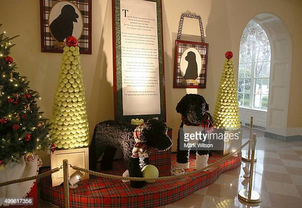 A display of the Obama family dogs Bo and Sunny are seen during first lady Michelle Obama's preview of the 2015 holiday decor at the White House...