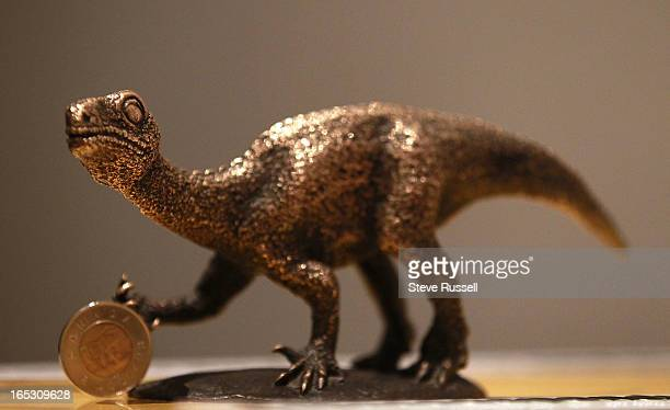 A display shows a onemonthold Massospondylus hatchling the dinosaur was born without teeth and a quadraped at birth The Royal Ontario Museum unveils...