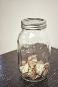 Dissected sheep brain in a jar