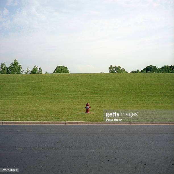 A distant fire hydrant at the bottom of a green hill