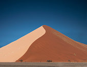 Distant trees and giant sand dune, Sossusvlei National Park, Namibia