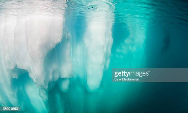 Diver And Iceberg