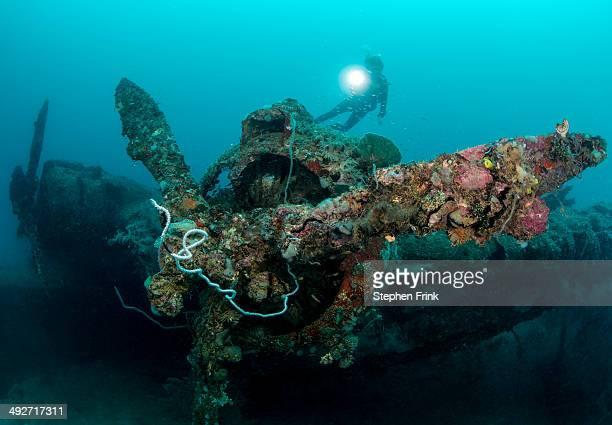 Diver and Mavis Seaplane.
