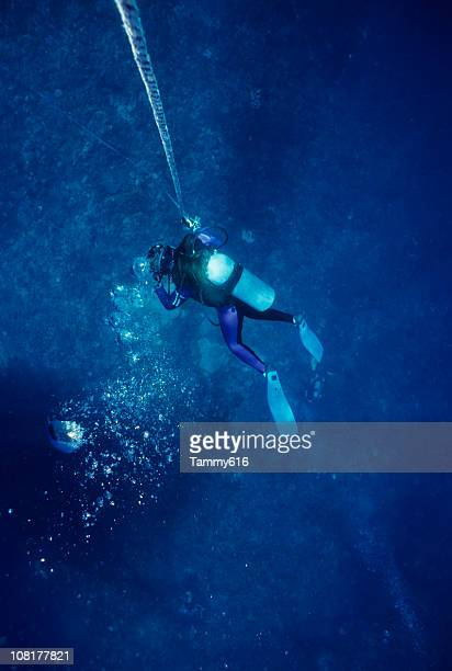 Diver Descending Into Water