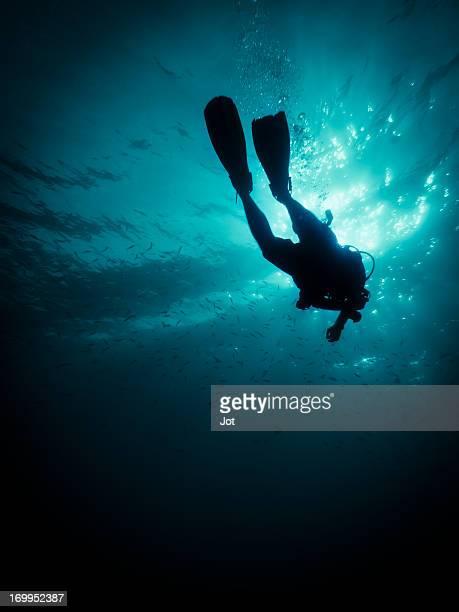 Plongeur en duvet