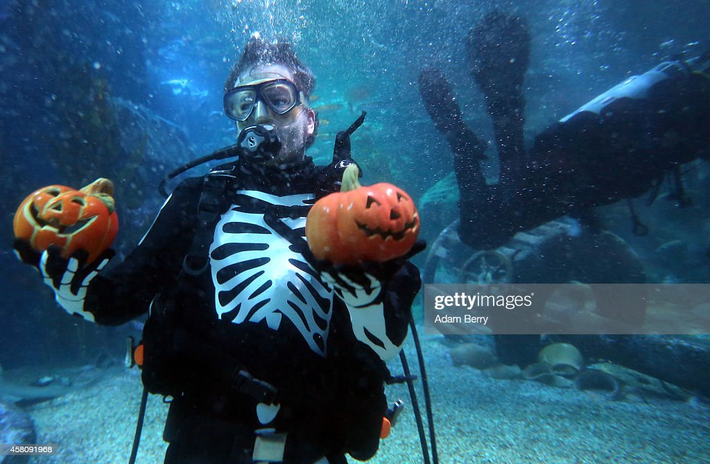 A diver dressed as a skeleton feeds fish out of jacko'lanterns to rays and sharks in a Halloweenthemed aquarium at the SEA LIFE AquaDom attraction on...