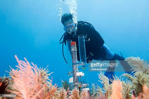 Diver looking at an underwater experiment in the Florida Keys