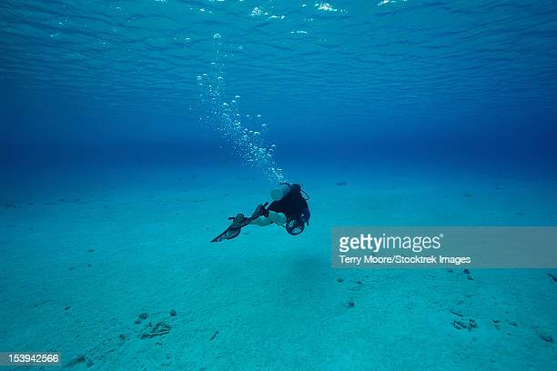A diver on a scooter explores the clear blue waters of Toris Reef, Bonaire, Caribbean Netherlands.