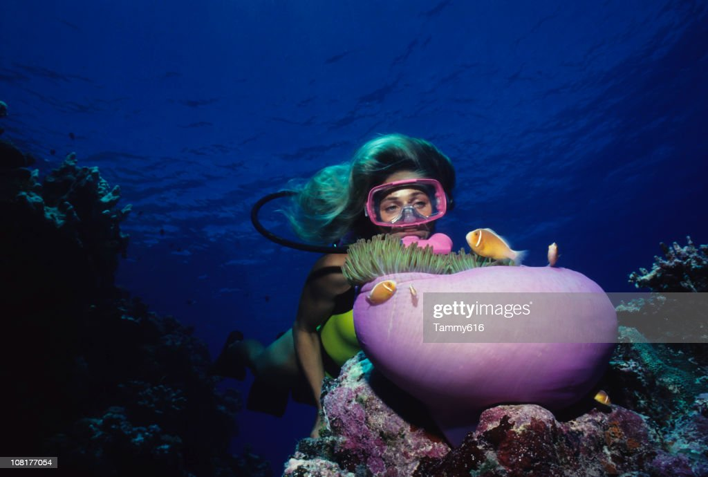 Diver Over Coral Reef With Anemone : Stock Photo