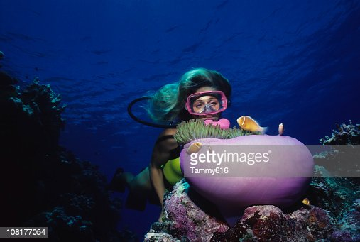 Diver Over Coral Reef With Anemone : Stockfoto