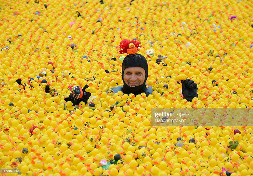 A diver swims between rubber ducks during the third rubber duck race on the Inner Alster Lake in Hamburg, northern Germany on September 1, 2013.