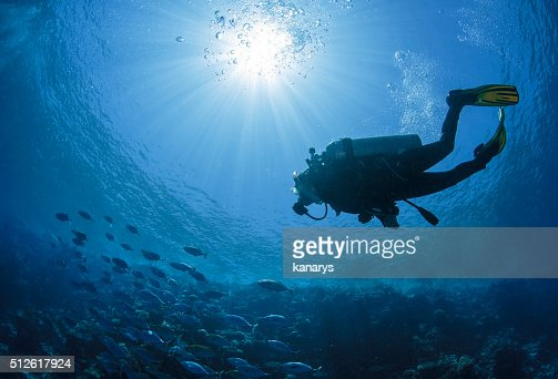 Diver swims in a Red Sea : Stock Photo