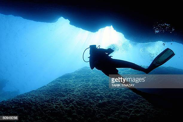 A diver wanders through the walls of a great sea canyon in the depth of the Mediterranean sea 11 June 2004 off the southwestern city of Kas AFP PHOTO...