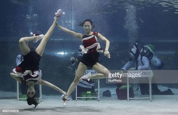 A Diver wearing a Santa Claus outfit swims with fish in a aquarium during a Christmas event at the Coex Aquarium in Seoul South Korea on December 18...