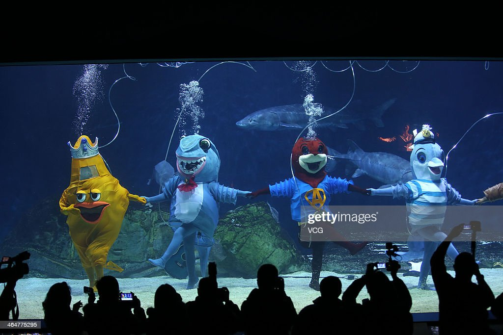Divers dressed as fish perform during the special program for celebrating Chinese Lunar New Year at Beijing Aquarium on January 24, 2014 in Beijing, China. The Chinese Lunar New Year of horse also known as the Spring Festival, which is based on the Lunisolar Chinese calendar, is celebrated from the first day of the first month of the lunar year and ends with Lantern Festival on the fifteenth day.