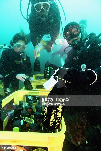 Divers place bottles of Shochu Japanese distilled beverage at the bottom of the sea off a landslide devastated Izu Oshima island on April 12 2014 in...