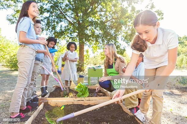 多様な大学生を植える野菜ガーデン」フィールドの旅