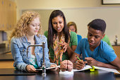Diverse high school classmates working on science project together