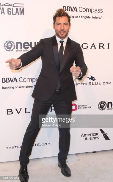 Divid Bisbal attends the 25th annual Elton John AIDS Foundation's Oscar Viewing Party at The City of West Hollywood Park on February 26 2017 in West...
