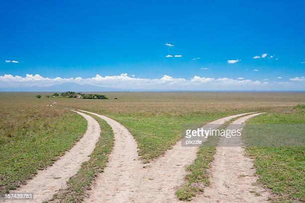Dividing roads, Serengeti fork junction